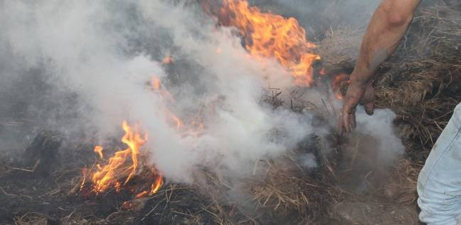 الحماية-المدنية-تتمكن-من-السيطرة-على-حريق-في-محصول-الذرة-بقطعة-أرض-زراعية-بالزقازيق